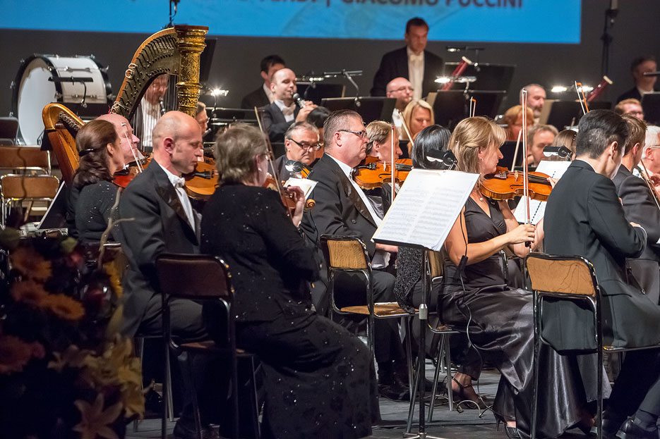 Philharmonic Orchestra of South Bohemia